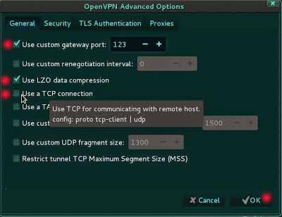 Kali Linux VPN 3