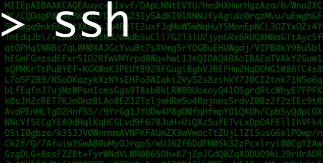 Ssh-Mitm | Server For Security Audits Supporting Public Key Authentication